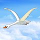 Swan Flies in the Cloudy Sky - VideoHive Item for Sale