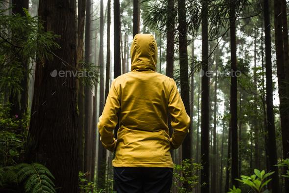 Enjoy the nature - Stock Photo - Images