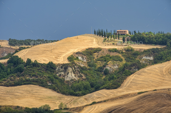 Tuscany: the road to Torre a Castello - Stock Photo - Images