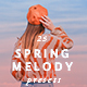 25 Spring Melody Lightroom Presets - GraphicRiver Item for Sale