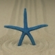 Zoom of a Blue Starfish Standing in a Circle of Sand - VideoHive Item for Sale