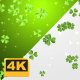 St Patrick's Day Backgrounds 4K - VideoHive Item for Sale