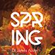 Spring Celebration Flyer - GraphicRiver Item for Sale