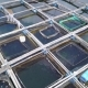 Fish Farm in Lake - VideoHive Item for Sale