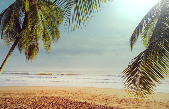 Coast in Costa Rica - Stock Photo - Images