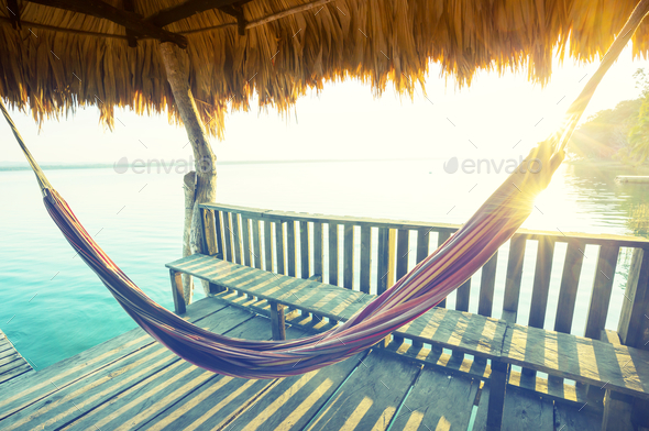 Hammock - Stock Photo - Images