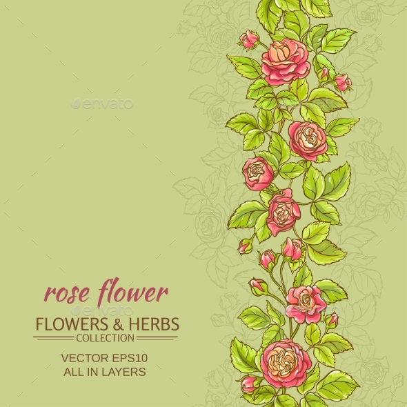 Rose Vector Background - Flowers & Plants Nature