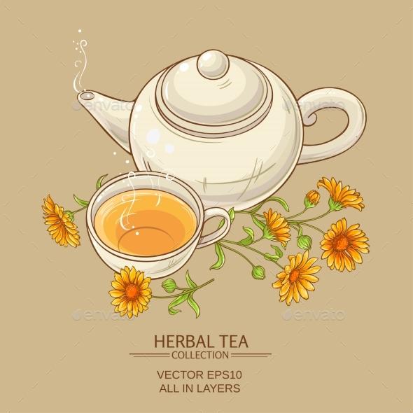 Calendula Tea  Vector Illustration - Health/Medicine Conceptual