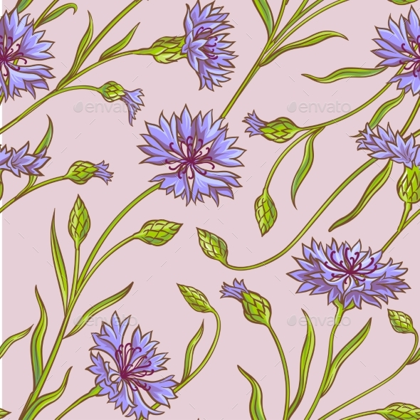Cornflower  Vector Pattern - Flowers & Plants Nature