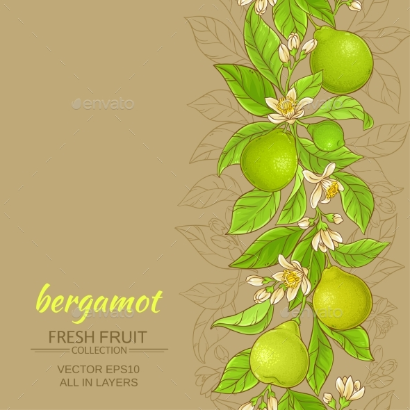 Bergamot Vector Background - Food Objects