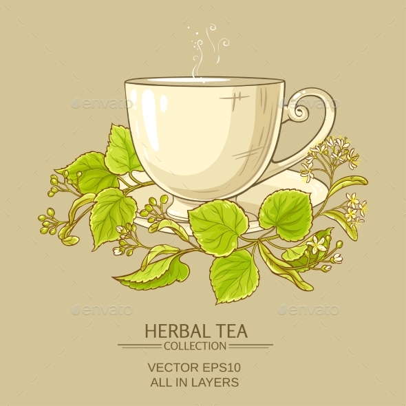 Cup of Linden Tea - Health/Medicine Conceptual