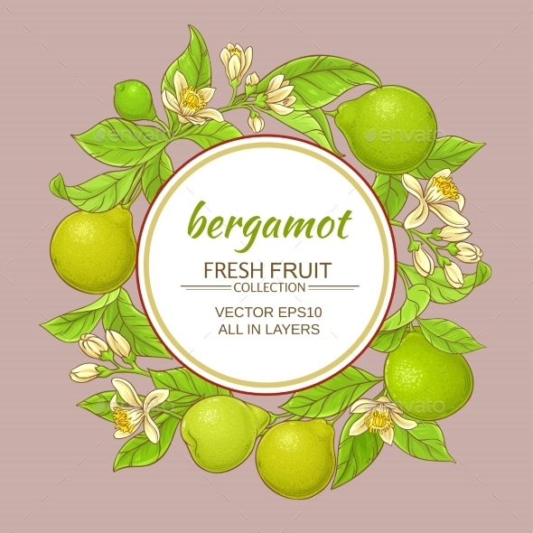 Bergamot Vector Frame - Food Objects