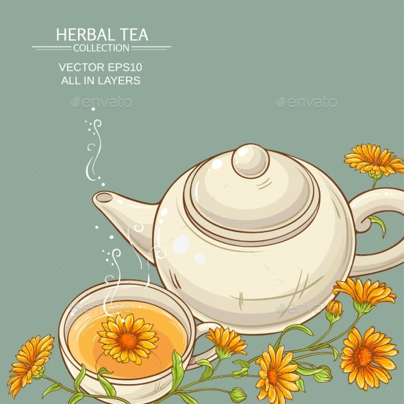 Calendula Tea  Vector Background - Health/Medicine Conceptual