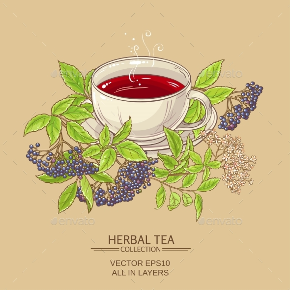 Cup of Elderberry Tea - Food Objects