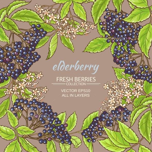 Elderberry Vector Frame - Food Objects