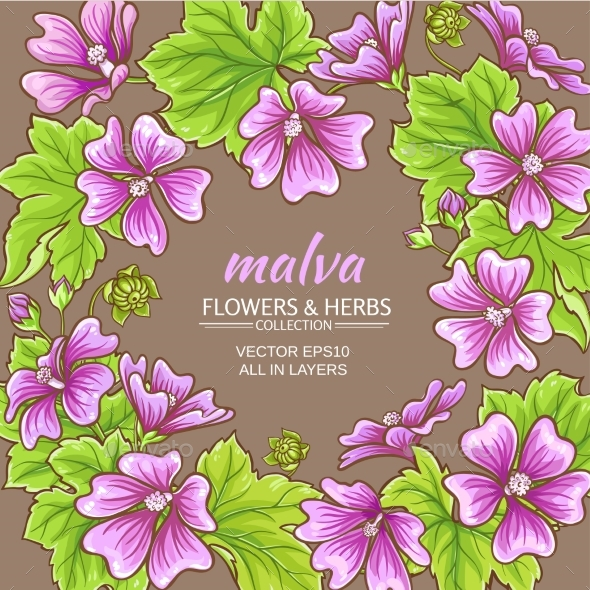 Malva Vector Frame - Flowers & Plants Nature