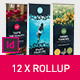 Rollup Stand Banner Display Bubble 12x Indesign Template - GraphicRiver Item for Sale
