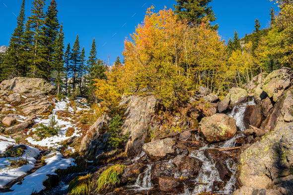 Season changing, first snow and autumn trees - Stock Photo - Images