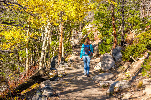 Tourist hiking in aspen grove at autumn - Stock Photo - Images