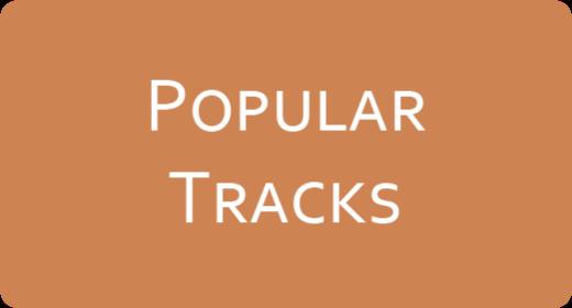 Popular Tracks