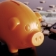 Piggy Bank and Calculator - VideoHive Item for Sale
