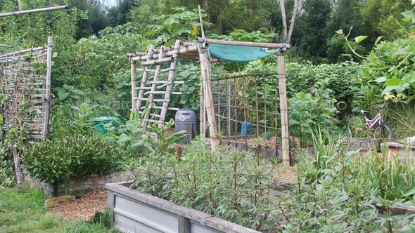 Permaculture Garden - Stock Photo - Images
