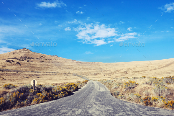 Road in prairie - Stock Photo - Images