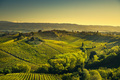 Panoramic view of countryside and chianti vineyards from San Gim - PhotoDune Item for Sale