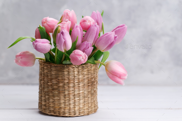 Bouquet of pink tulips - Stock Photo - Images