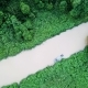 Aerial View of Tropical River - VideoHive Item for Sale