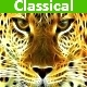 Classical Pack