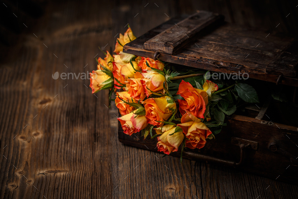 Luxurious and elegant bouquet of roses - Stock Photo - Images