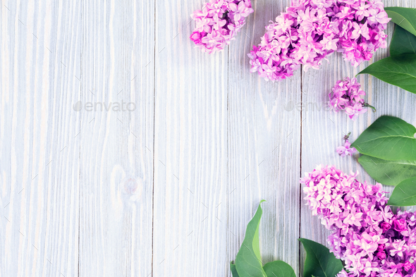 Spring flowers background - Stock Photo - Images