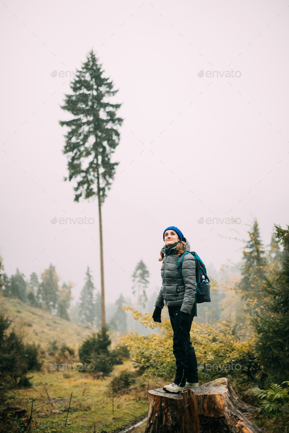 Young Woman Standing On Stump In Forest And Looking Up - Stock Photo - Images