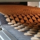 Production Line of Baking Cookies. - VideoHive Item for Sale