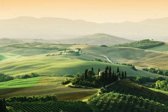 Tuscany landscape at sunrise. Tuscan farm house, vineyard, hills. - Stock Photo - Images