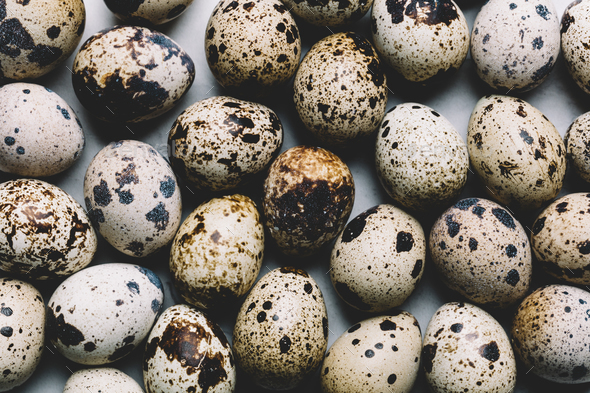 Group of quail eggs with dark spots laying together - Stock Photo - Images