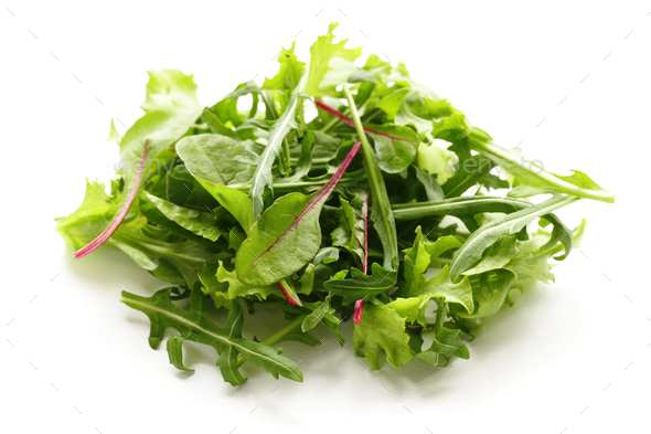 Green Salad Leaves - Stock Photo - Images