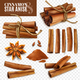 Cinnamon Star Anise Transparent Set
