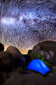 Milky Way in Joshua Tree - PhotoDune Item for Sale