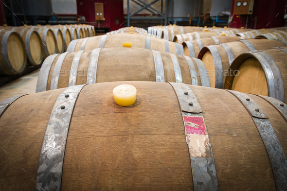 Wine barrels in the cellar of the winery - Stock Photo - Images