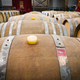 Wine barrels in the cellar of the winery - PhotoDune Item for Sale