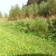 Country Road Running along the Forest Covered Grass and Flowers - VideoHive Item for Sale