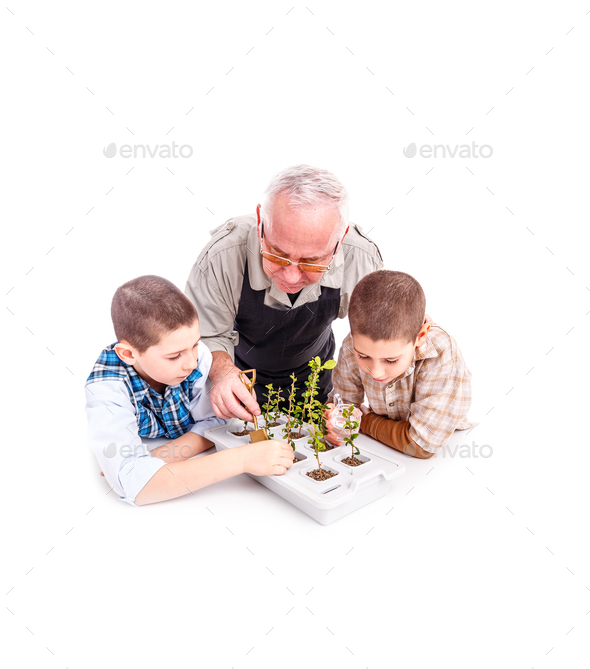 Senior man with his grandchildren - Stock Photo - Images