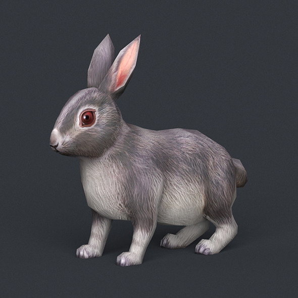 Game Ready Rabbit - 3DOcean Item for Sale