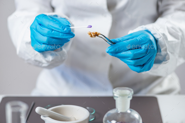 Microbiologist analysing quality of fruits - Stock Photo - Images