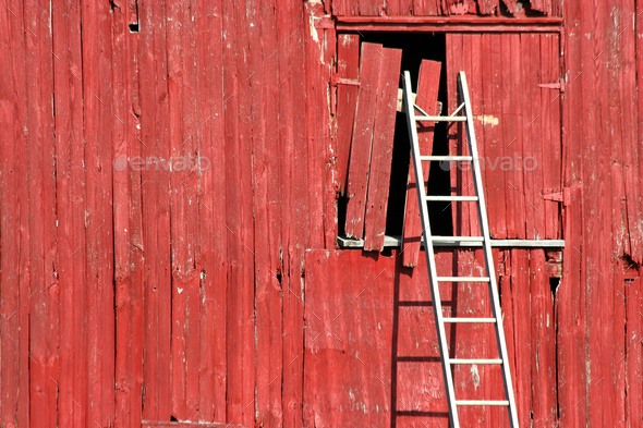 Ladder on a red barn - Stock Photo - Images