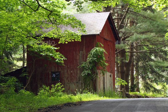 Red barn in the woods - Stock Photo - Images
