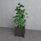 plant pots - Decoration Interior - 3DOcean Item for Sale