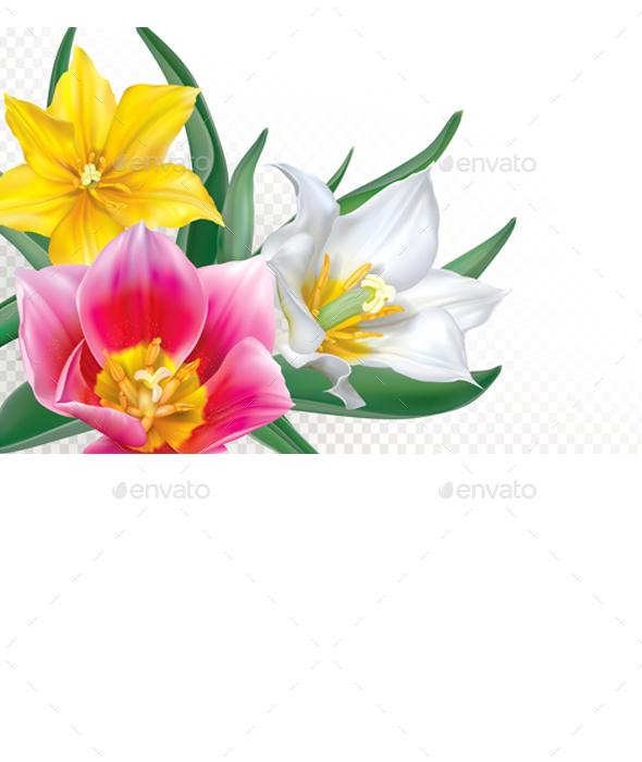 Bouquet Tulips on Transparent Background - Flowers & Plants Nature